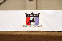 29-ASHAM Charity Fall Show - Official Photographer