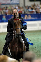 2006 WC WedEve- 3YrOld 3Gaited-photos