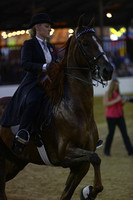 S05.  ASB Five-Gaited Pleasure Stake