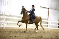 55.  Equitation Championship-All Ages