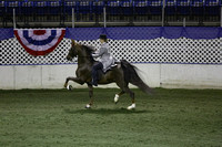 103. Five-Gaited Pony Stake