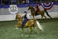 113.  Adult Five-Gaited Show Pleasure National Championship