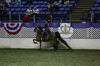 107.  Adult 3Gt Country Pleasure National Championship