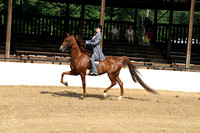 05.  Equitation 17 and Under
