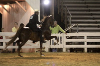 74-Five Gaited Championship