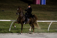 31-Five Gaited Championship