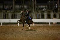 19.  Three-Gaited Stake