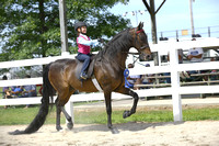 85.  ACAD 6 & Under WT Equitation