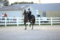 32.  Three-Gaited Stake