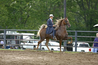 30.  ASB Five-Gaited Championship