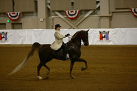 38.  ASB 3Gt Show Pleasure-Novice Rider
