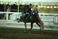 26.  ASB Open Five-Gaited