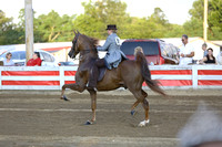 43.  Three-Gaited Park