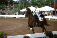 48.  Juvenile Five-Gaited Stake