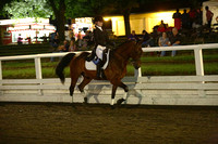 121.  Open Dressage Suitability