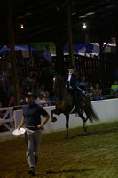 S07.  Amateur-Juvenile Three-Gaited Stake