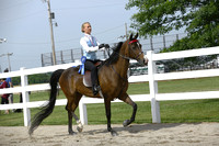 76.  ACAD Adult WT Equitation