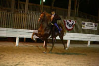 23.  Three-Year-Old Five-Gaited
