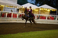 120.  ASB Amateur Three-Gaited Championship