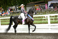 103.  ASB Western Country Pleasure Championship