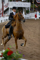 47.  Two-Year-Old Three-Gaited